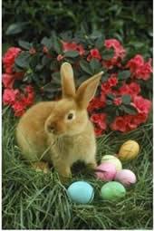 easter_egg_bunny